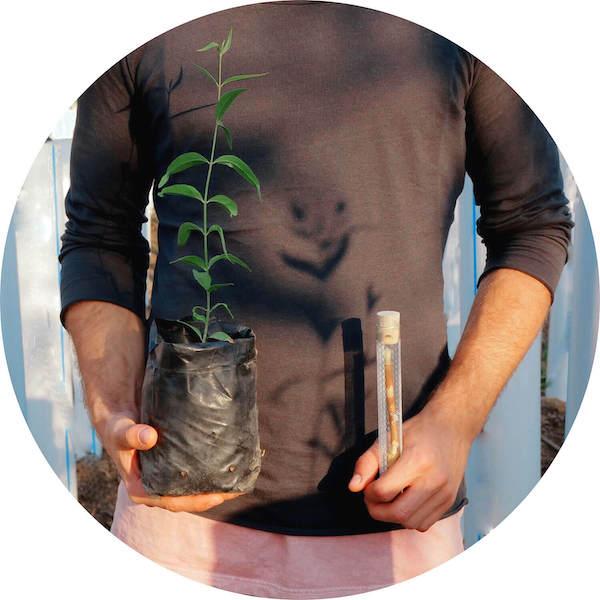 Krištof se sazenicí stromu salvadory perské