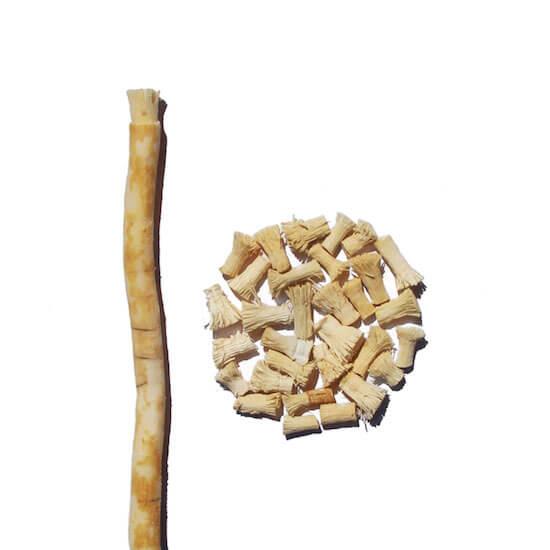 Rawtoothbrush a náhradní náplně - přírodní kartáček ze Salvadory perské