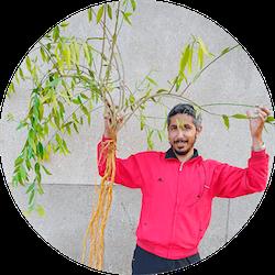 rawtoothbrush farm fresh